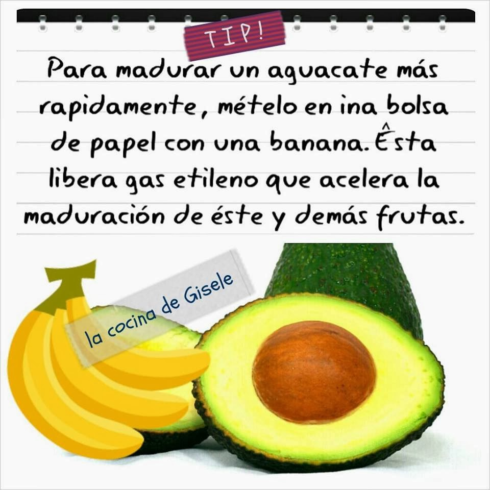 tip-aguacate